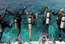 Narie Scuba Club / Narie Scuba Club Dive Academy – zapraszamy do nas!