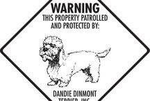 Dandie Dinmont Terrier Signs and Pictures / Warning and Caution Dandie Dinmont Terrier Dog Signs. https://www.signswithanattitude.com/dandie-dinmont-terrier-signs.html