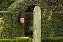 Garden hedge design