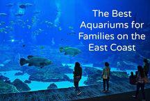Best of U.S. Family Travel
