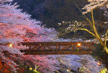 Japan-Zen