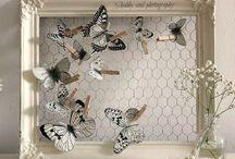 Cadre avec papillon