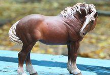 Horsing around / Anything horse based