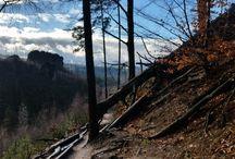 Tour Bohemian Switzeland / výlety, turistika, průvodce, guide