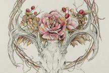 Рисунки черепов
