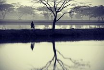 My Shoot_Landscape