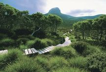 Great Places for bushwalking in Victoria, Australia / Images of our wonderful walks in Victoria, Australia.