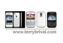 Terry Brival Phone
