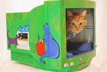 Camas de gatos