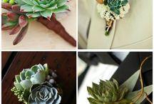 Groom buttonhole I love!