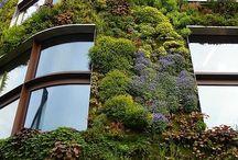 Ärlan: Växter i arkitekturen / Hur man kan integrera växter i fasad, balkonger, loftgångar, tak, etc.