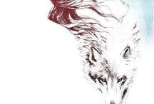 Zvieratá vlk