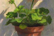 Flowers: Geranium
