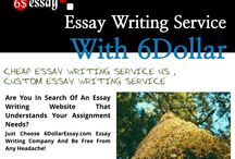 Essay - Format -  Essay Writing in USA