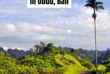 Indonesia outdoor