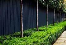 PaintRight Colac Fences