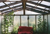 Greenhouse ::Outdoor Space