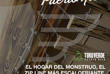 EL MONSTRUO / El zip line más largo del Universo, con un cable de 2.5km(2530m, 8300ft, 1.57mi), SI COMO LO LEÍSTE 2.5km, el equivalente a 28 canchas de football.  www.toroverdepr.com