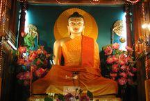 Buddha Metta / by madamepOmm BYK