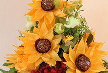 słodkie słoneczniki