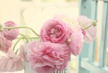Fleurs & Bouquets / Des fleurs, encore des fleurs... Que du bonheur !