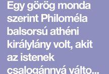 mese - Philoméla