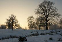 Winter Tales / Photos of Simleu Silvaniei surrounding area