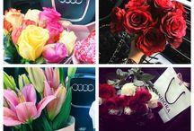 ROSSANA roses