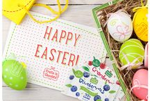 Happy Easter! / Make it a sweet Easter holiday with Fruits in Chocolate!
