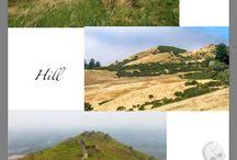 THE RIDER-Hill