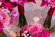 pink&fuchsia