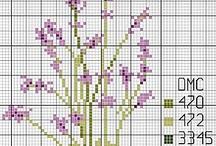 Lavendel / Alles over lavendel