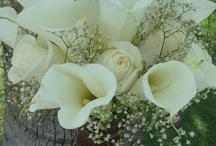 Flowers !!