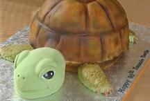 dort želvy