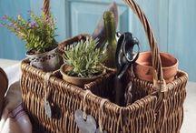 Baskets / by Alicia Palmiero