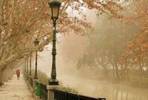 autumn & winter