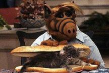 Alf Birthday Party Ideas, Decorations, and Supplies / by Hard To Find Party Supplies