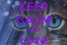 keep calm and make a pinwand