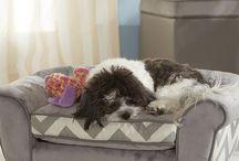 camas p perro