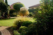 OSOBNÍ ZAHRADNÍ PORADCE / garden,gardening,gardendesign,gardener
