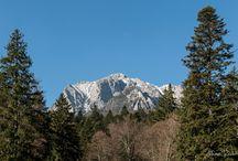 Romanian mountains