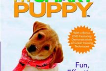 puppy possibilities / by Jennifer Wright