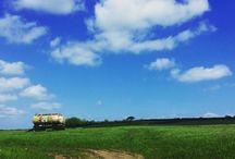 My World / Walks & bike rides mostly in and around my home in Devon. #dartmoor #devon # countryside # england