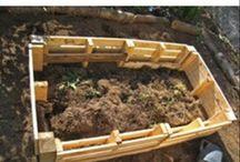 Raised beds / Veg garden