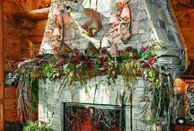 Fireplaces / Fireplace, Fire place