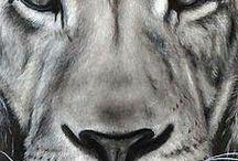 My leo