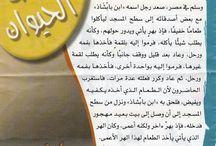 arabic hikaye