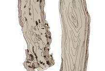 קצביית עצים