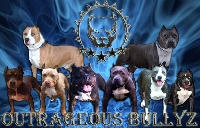 Bully Breeds...My Favorites / by Kristy McKusick