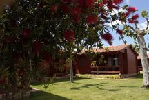 Bungalows / Disponemos de bungalow de madera, completamente equipados; El alojamiento perfecto para sus vacaciones
